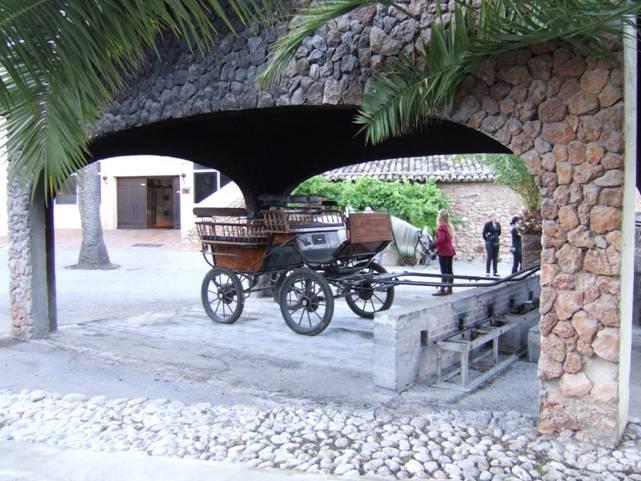 """Crociera 2008 - """"Profumi di Mediterraneo"""" con Costa Magica - 19 06 Palma di Maiorca (9 di 12)"""