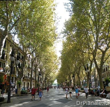 2011_0831_Palma_0727