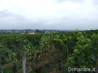 2008_0903_Bordeaux_0842