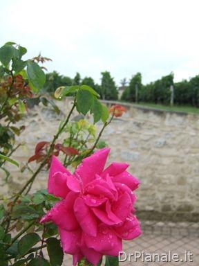 2008_0903_Bordeaux_0848