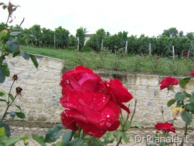 Fusione 2008_0903_Bordeaux_0844