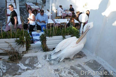2012_0706_Mikonos_0386