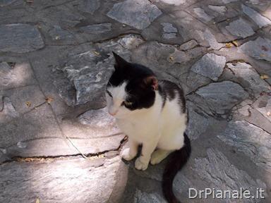 2012_0707_Izmir-388