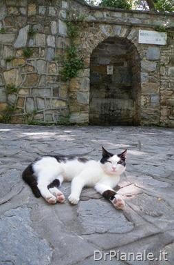 2012_0707_Izmir-394