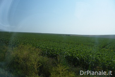 2012_0709_Costanza_0719