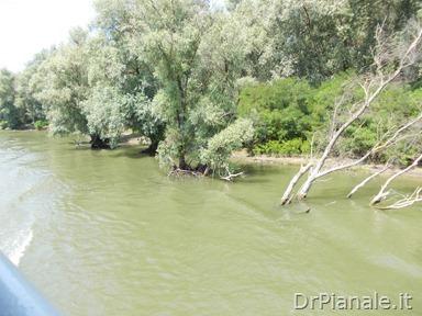 2012_0709_Costanza_0778