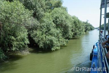 2012_0709_Costanza_0781