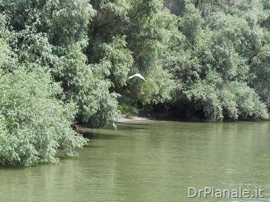 2012_0709_Costanza_0784