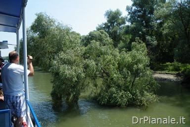 2012_0709_Costanza_0786