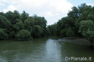2012_0709_Costanza_0850