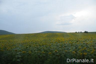 2012_0709_Costanza_0886