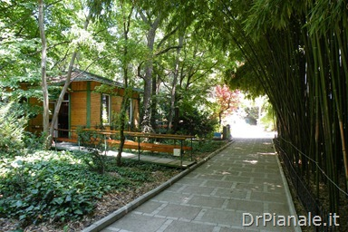 2012_0711_Yalta_1366