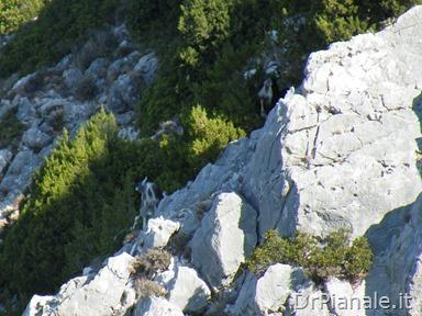 2012_0905_Argostoli_0446