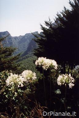 1998_0813_Funchal_139