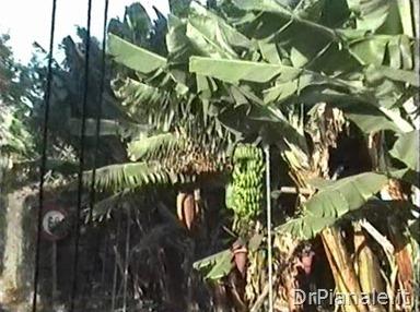 1998_0813_Funchal_190