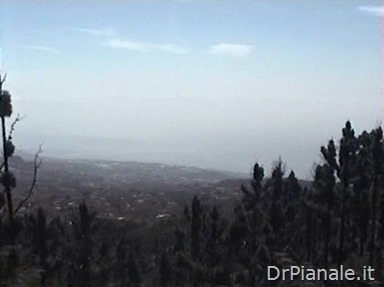 1998_0814_St Cruz de Tenerife_288