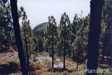1998_0814_St Cruz de Tenerife_290