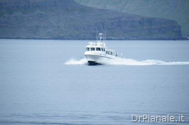 DSCF0971